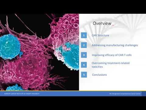 Engineering strategies to overcome the current roadblocks in CAR T cell therapy