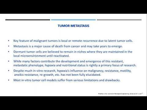 A novel solid tumor model in the Petaka G3:  a simple, progressive, in-vitro model of the harsh tumor microenvironment and its implications in metastasis research